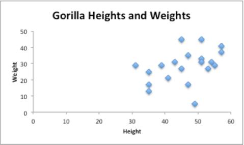 gorilla_0KK
