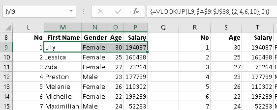 VLOOKUP with Array Constants | Excel with Excel Master